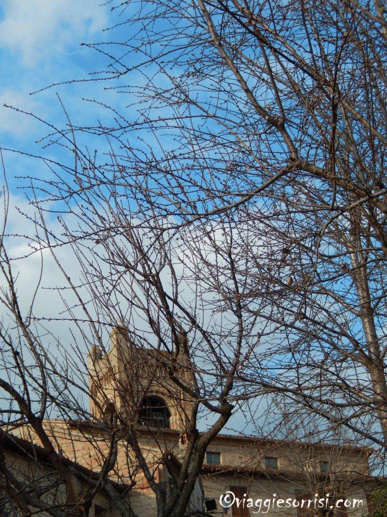 scorcio del campanile