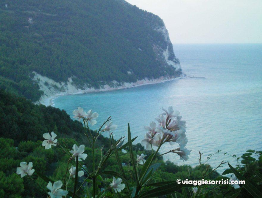 Balcone sul mare - Sirolo