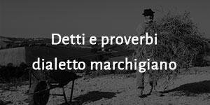 Detti e proverbi dialetto marchigiano