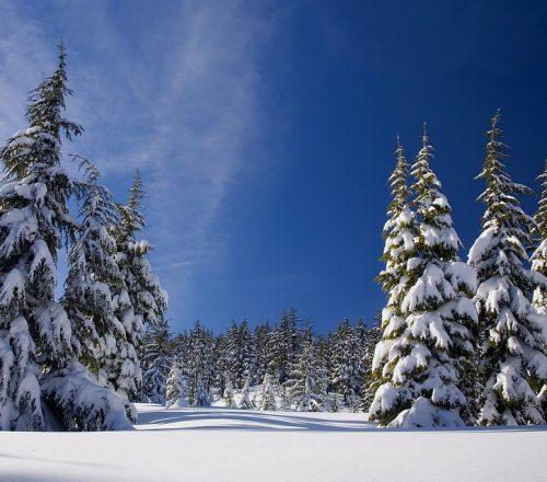 alpe cimbra neve bambini