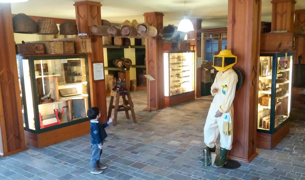 museo del miele lavarone alpe cimbra