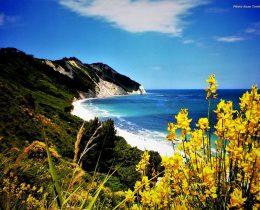 spiaggia di mezzavalle portonovo