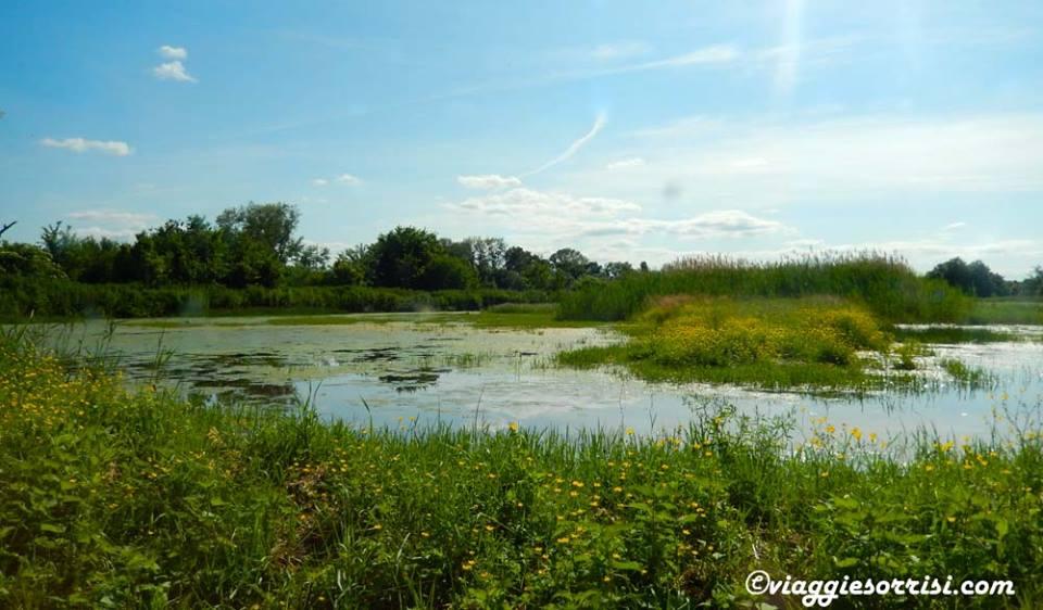 Il lago dell'Oasi Ripa Bianca Jesi