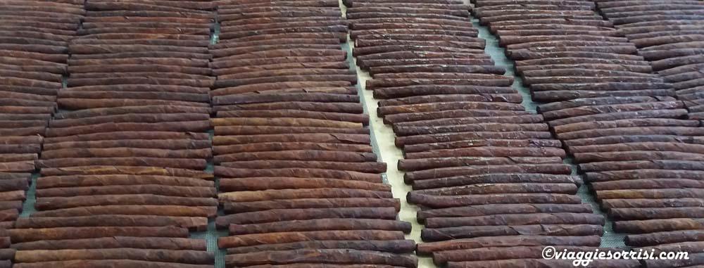 I pregiati sigari della Compagnia Toscana Sigari di Sansepolcro
