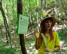 bosco dei folletti urbania