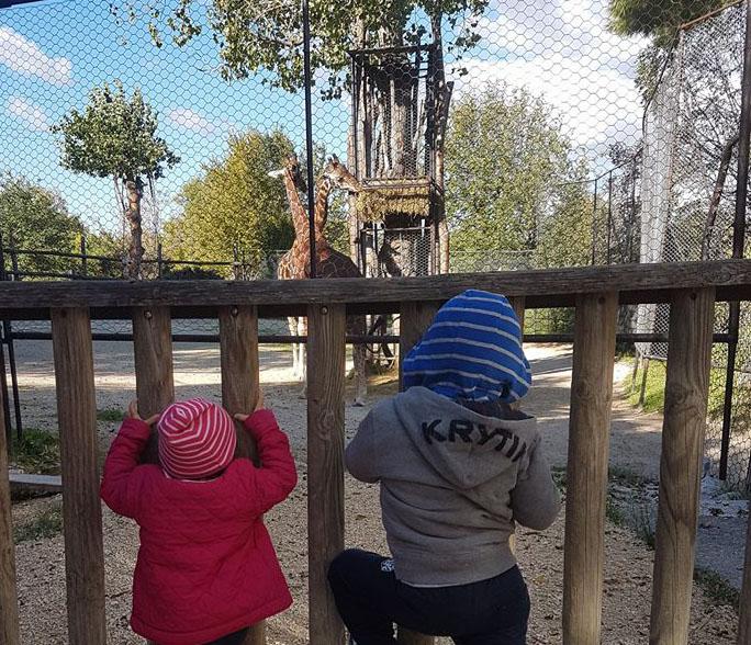 parco zoo di falconara