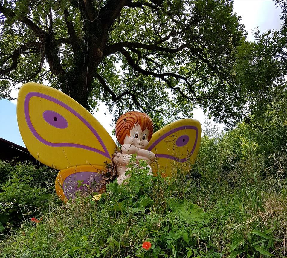 museo delle farfalle cessapalombo