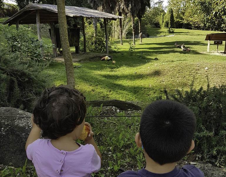 Nel mondo degli animali, Parco Natura Viva - Bussolengo (Vr) - Viaggi e Sorrisi