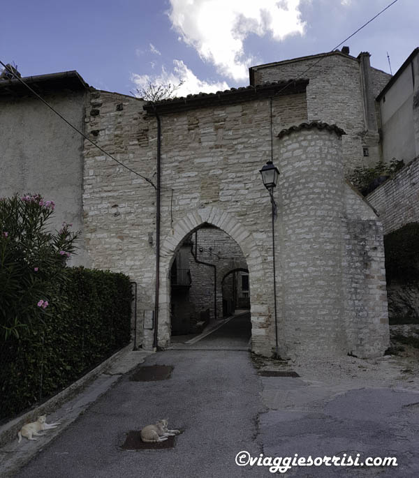 porta palazzo di arcevia