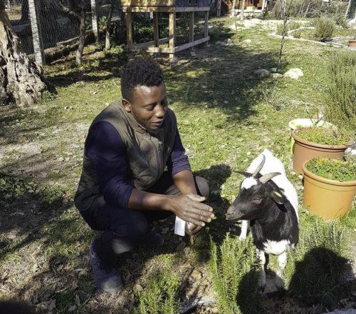 fattoria di campagna montecarotto