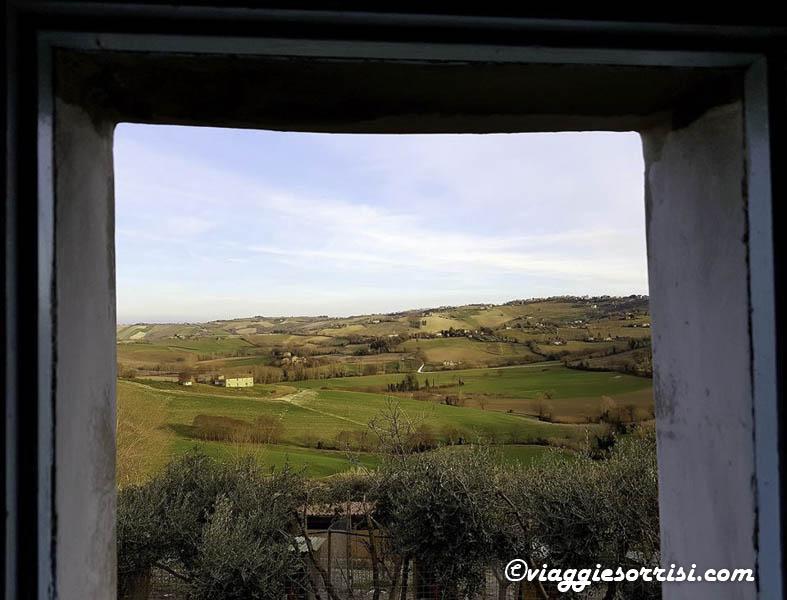 una finestra sulle campagne di montecarotto fattoria