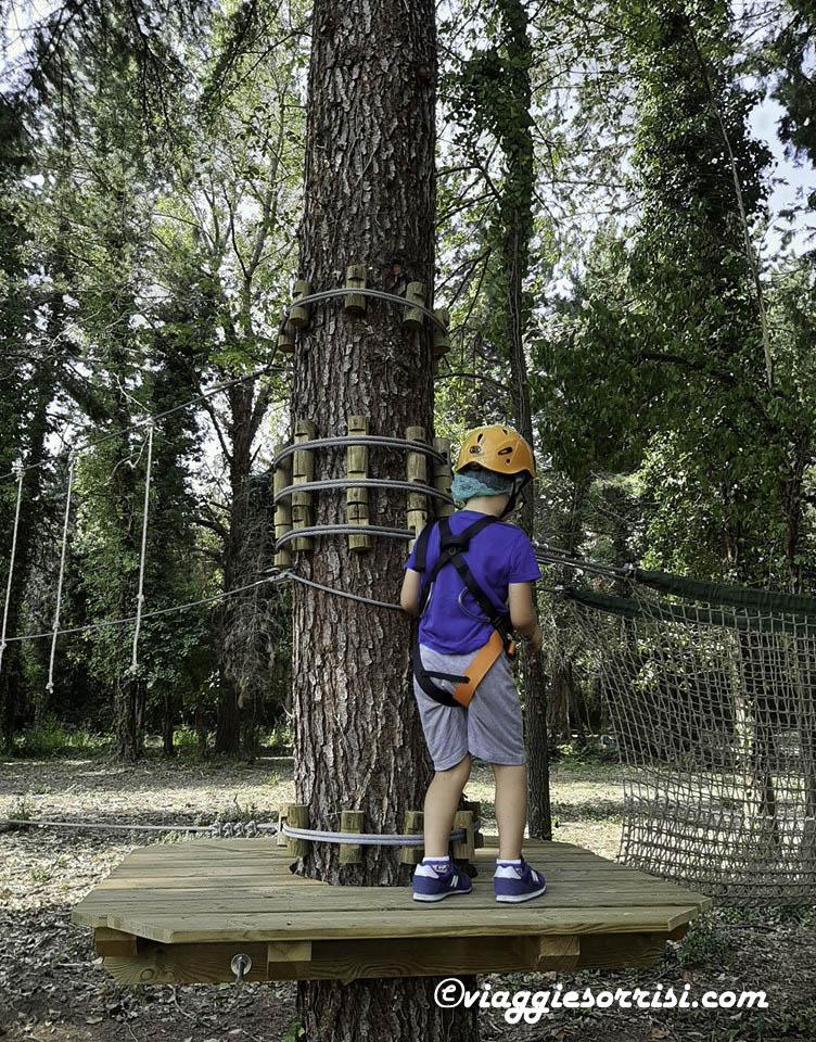 ercorso tra gli alberi treekpark