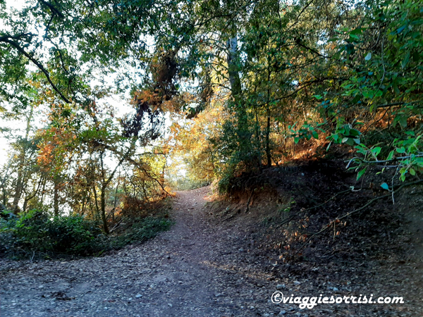 sentiero grotte romane conero