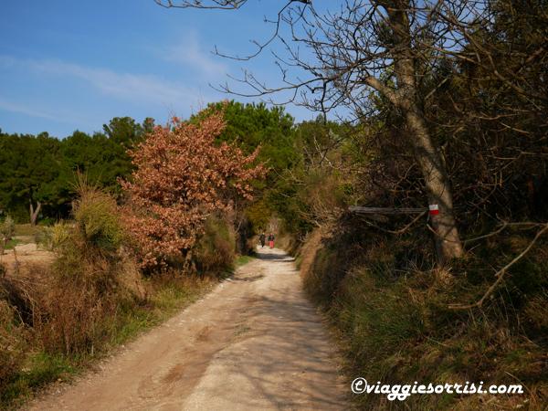 sentiero pian di raggetti conero