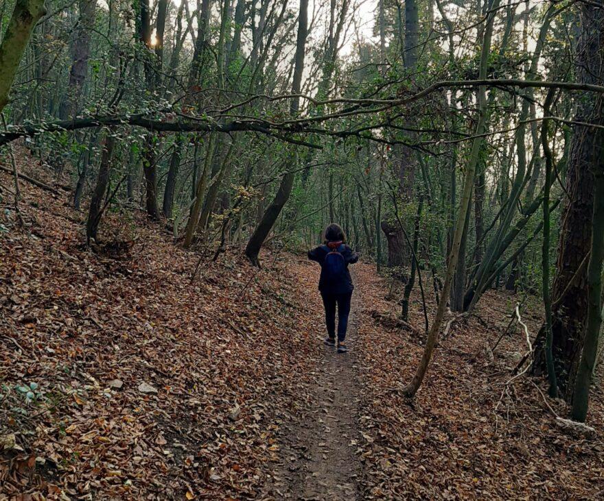 sentiero natura poggio sirolo