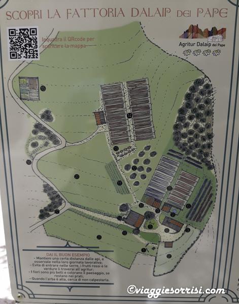 fattoria dalaip dei pape