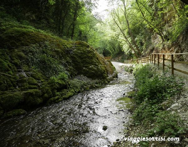 percorso acque pieve torina