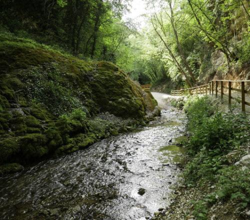 percorso delle acque di pieve torina