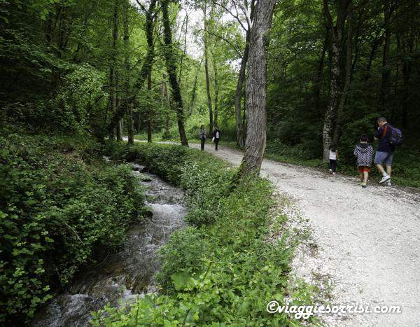 percorso delle acque pieve torina mc